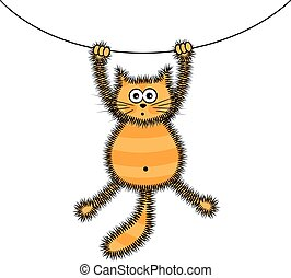 Playful red cat - playful cute furry striped red cat caught...