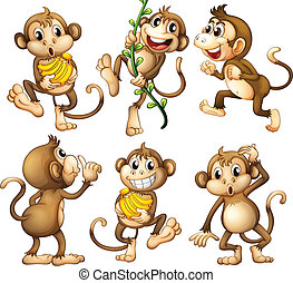 Illustration of the playful wild monkeys on a white background