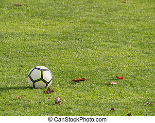 playground., 白, フットボール, ライン, 細部