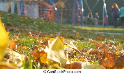 Playground people relax Autumn park, forest trees. Fallen leaves