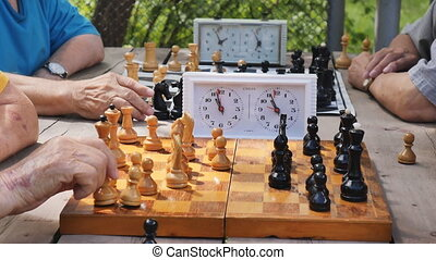 playing chess in the Park on a summer day