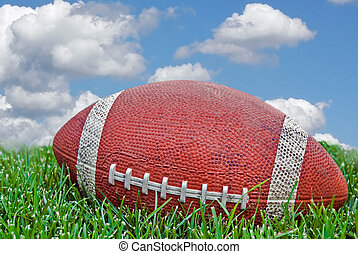 Playing Field - Football in grass with sky background.