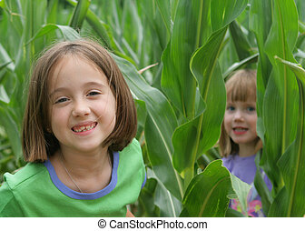 Playing in the corn field