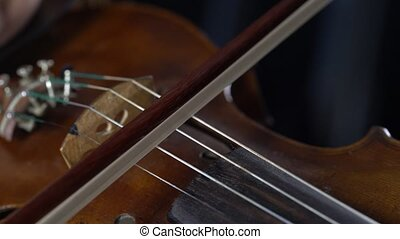Playing on a brown violin girl fingering the strings. Close up. Black background