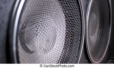Playing the Bass Speaker Membrane. Loopable. The Movement of the Vintage Paper Cone. Slow Motion