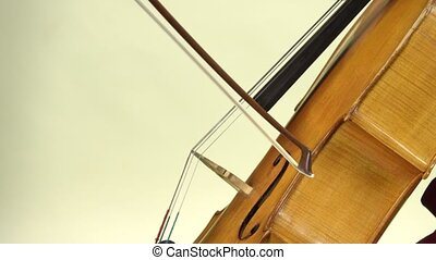 Playing the cello close up. White background