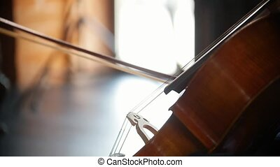 Playing the cello - the bow smoothly walks along the strings...