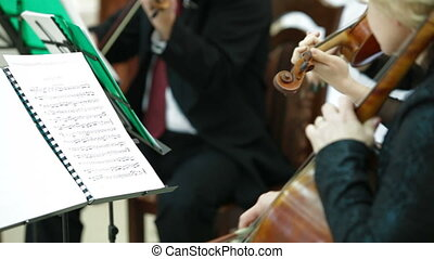 Playing Violin And Cello