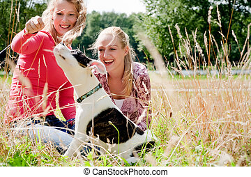 Playing with the dog in the sun - Two blond girls and a...
