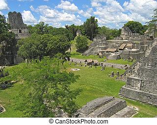 plaza, de, viejo, maya, ruinas, en, el, selva, tikal, guatemala