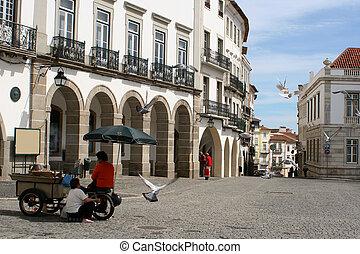 plaza scene - chestnut vendors in Evora, Portugal