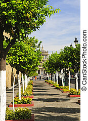 Plaza Tapatia leading to Hospicio Cabanas in Guadalajara, Jalisco, Mexico