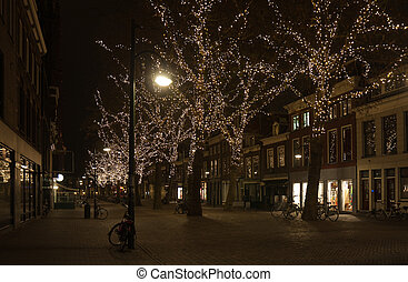 Pleasant lights in the trees in a Dutch city in december
