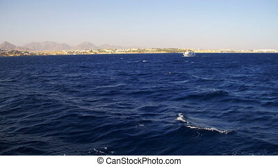 Pleasure Boat Floats on the Waves of the Red Sea on the...