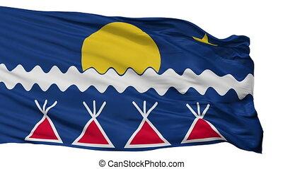 plemię, odizolowany, seamless, bandera, indianin,...