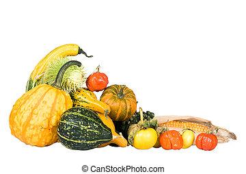 Plenty of gourds