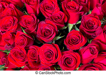 Plenty red natural roses seamless background
