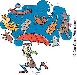 pleuvoir, chiens, dessin animé, proverbe, illustration, chats