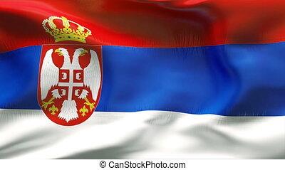 plissé, drapeau, serbie, vent