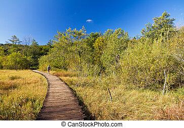 plitvice, footpath