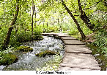 plitvice, hölzern, pathway., -, seen