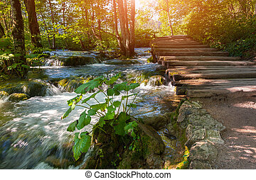 plitvice, laghi, di, croazia, -, parco nazionale, in,...
