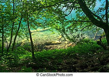 plitvice, lago, vista, (croatia), attraverso, il, foresta