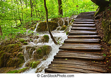 View on Plitvice lakes in the central part of Croatia
