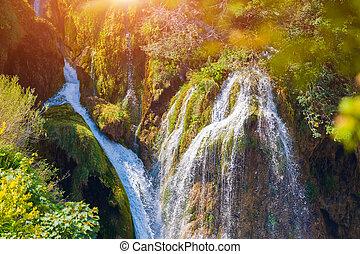 plitvice, liget, nemzeti, -, tavak, ősz, horvátország