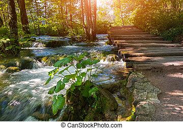 plitvice, park, national, -, seen, herbst, kroatien