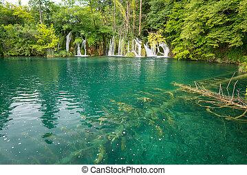plitvice, seen, von, kroatien, -, nationalpark, in, sommer
