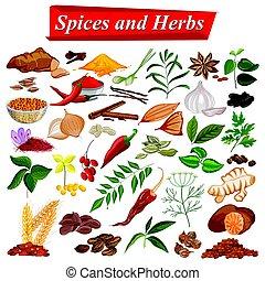 plný, vybírání, o, aromatický, koření, a, byliny, použitý, jako, vaření
