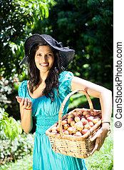 plockning, kvinna, litchiplommon, fruktträdgård