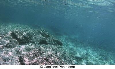 plongée, scaphandre, sous-marin
