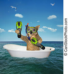 plongeur, chien, mer, bain