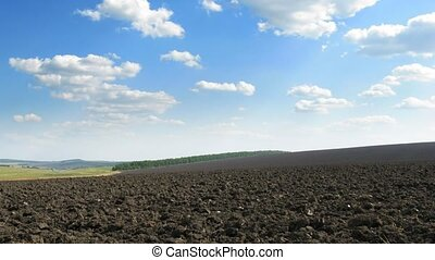 plough-land. - plough-land and blue sky. time lapse