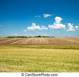 ploughed and green field under blue cloudy sky