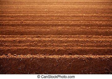 ploughed, barro vermelho, solo, agricultura, campos