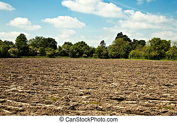 A rough ploughed field with a border of trees