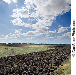 ploughed field after harvesting