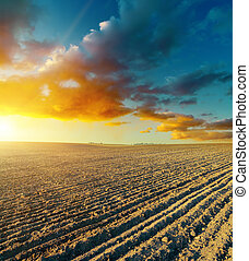 ploughed field and sunset
