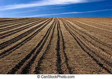 Ploughed field - ploughed field ready to be cultivated