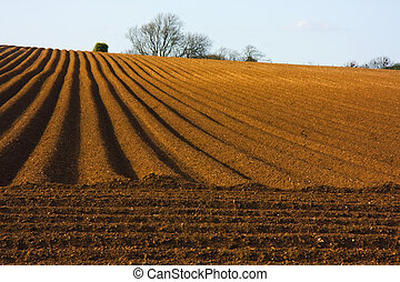 Ploughed Field - Rural landscape depicting the wonderful...