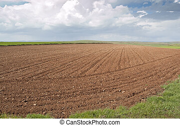 Ploughed field in Ciudad Real (Spain)