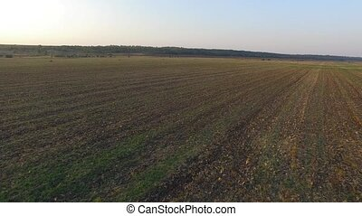 Ploughed field. The nature of the native land. Airview -...