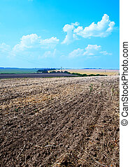 ploughed field with sky - ploughed field with blue sky in...