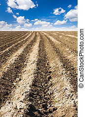 ploughed field with sky