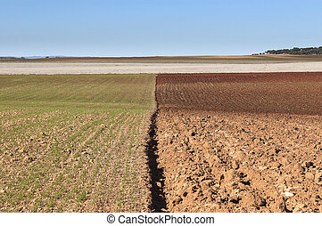 Ploughed field - Ploughed fields in the vast plain of...
