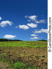 ploughed pasture against beautiful sky with cumulus clouds