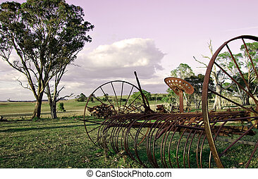 plow in the paddock